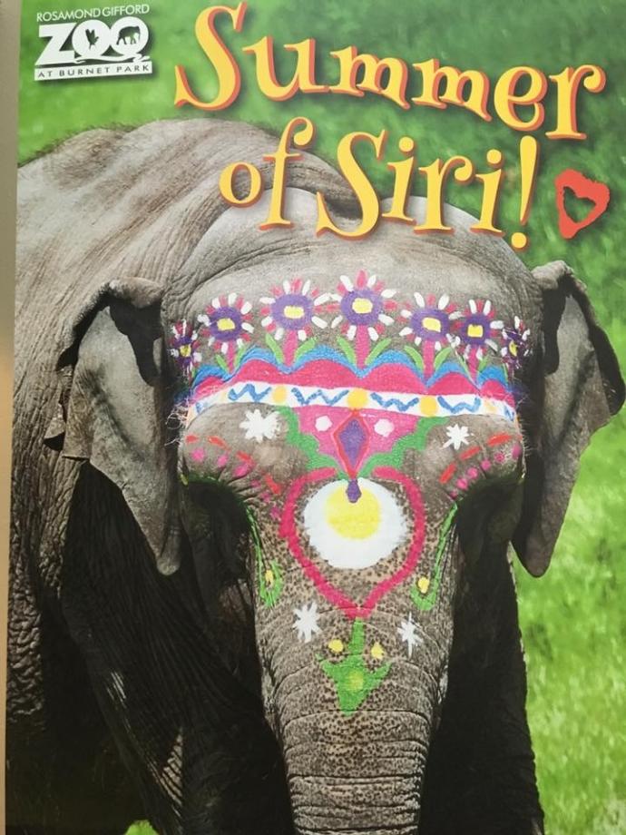 Asian Elephant Extravaganza Siris 50th Birthday Celebration to be